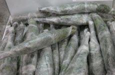 Вся правда о замороженных вениках для бани