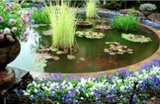 Декоративный водоем своими руками – изюминка на вашем участке