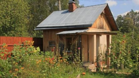 Как построить мини баню на даче своими руками