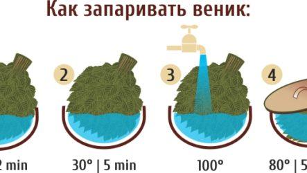 Как правильно запарить березовый веник для бани