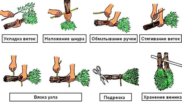 Сбор материала и заготовка веника