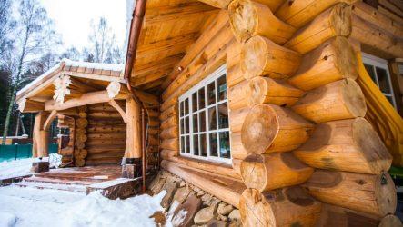 Польза деревянного дома из кедра